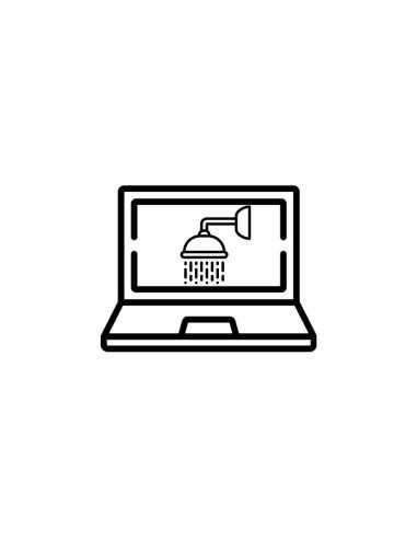 Repair of wet laptop